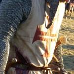 Arn skadad på slagfältet