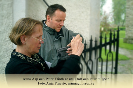 asp_flinth